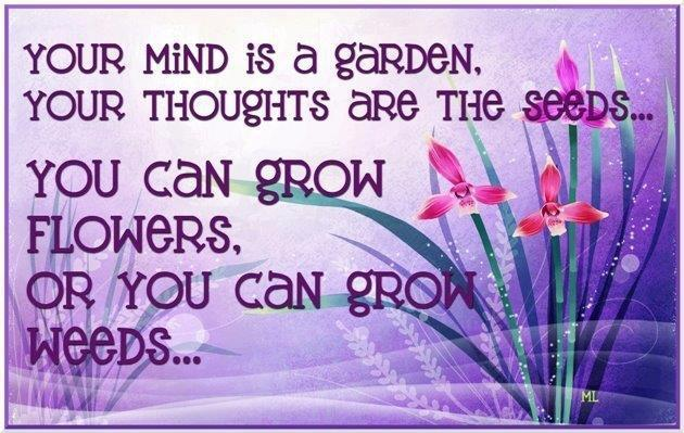 The Mind is a Garden
